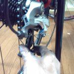 ロードバイクの後輪 着脱方法(クイックリリース式)